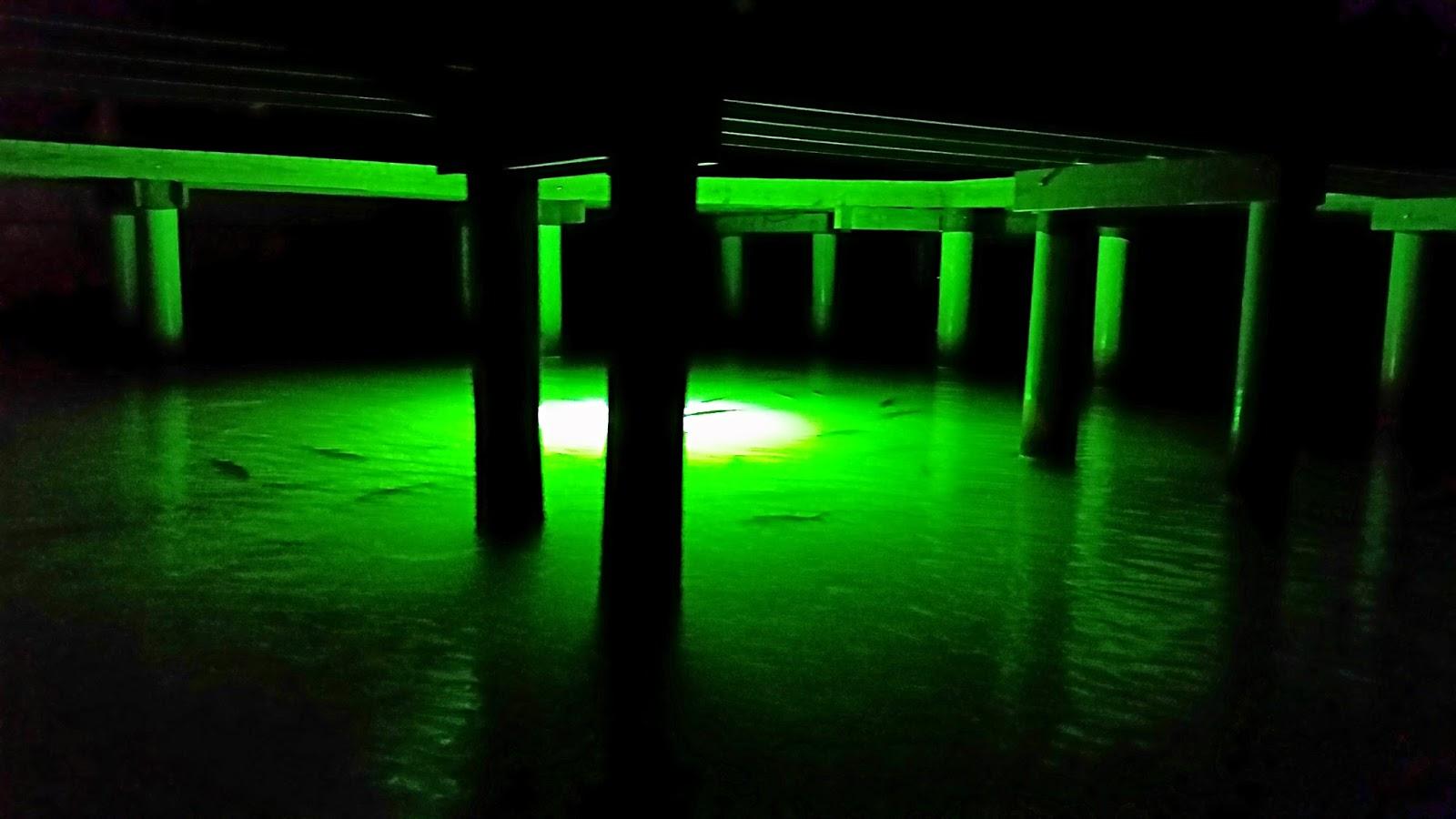 Southern kayak kronicles night fishing around lighted for Kayak lights for night fishing