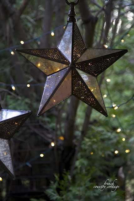 Glass star in tree