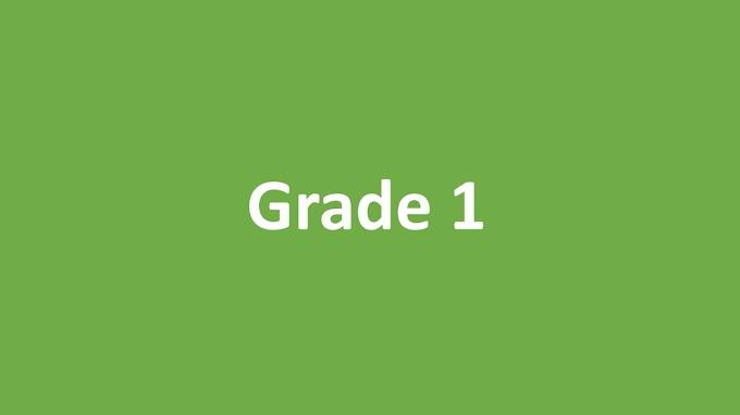 Prostatomegaly Grade 1