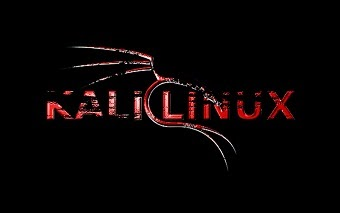 13 Things To Do After Installing Kali Linux