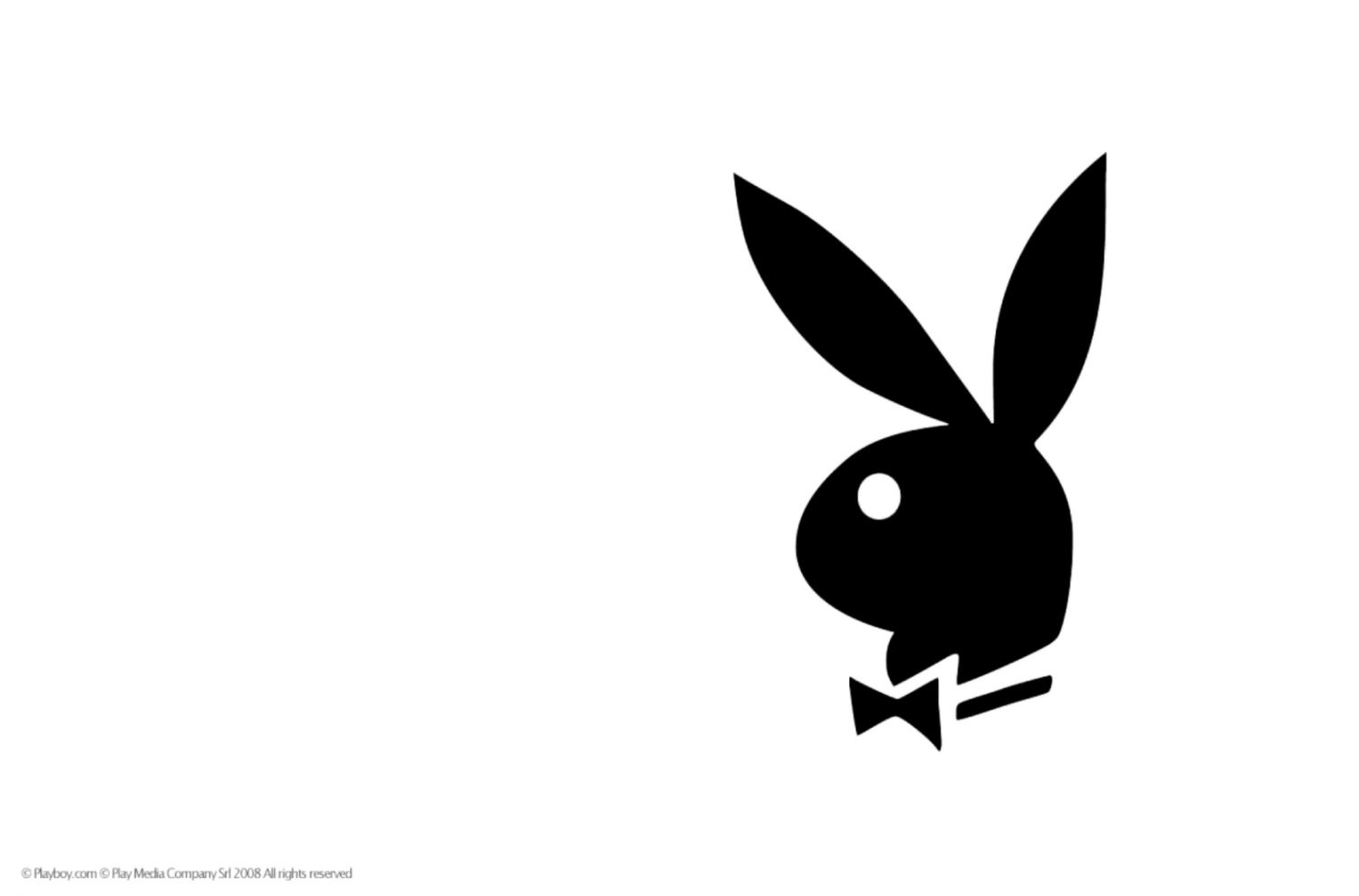 Official copyrighted playboy logo hd wallpaper with plain white