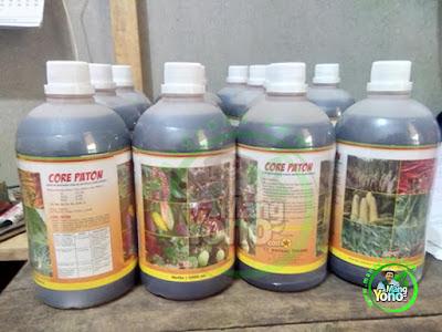 Jual Zat Pengatur Tumbuh / ZPT Core Paton Untuk Batang Daun Bunga Dan Buah
