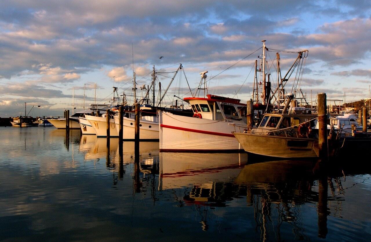 雪梨-景點-推薦-史蒂芬港-旅遊-自由行-澳洲-Sydney-Port-Stephens-Travel-Australia