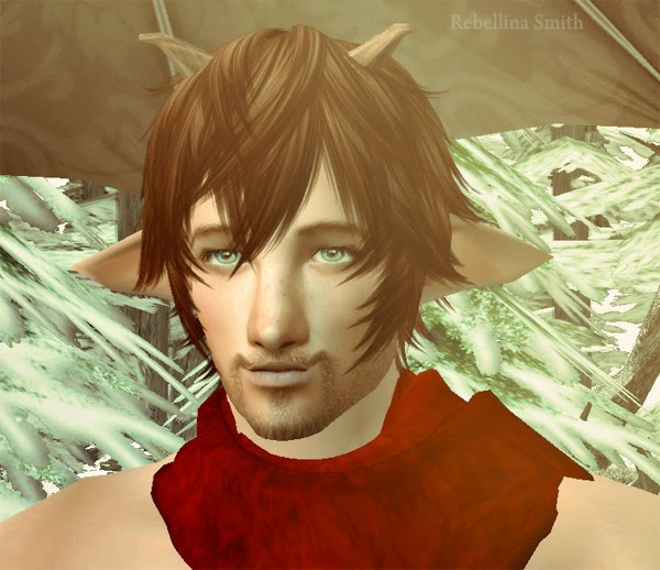 http://rebellinas.blogspot.de/2015/01/tea-in-narnia-mr-tumnus-sim.html