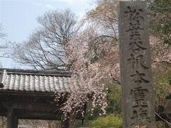 鎌倉安国論寺