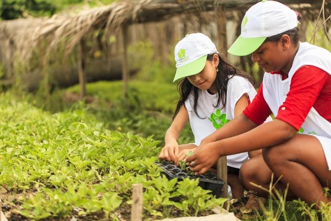 Projeto de educação ambiental em Ipixuna do Pará é premiado