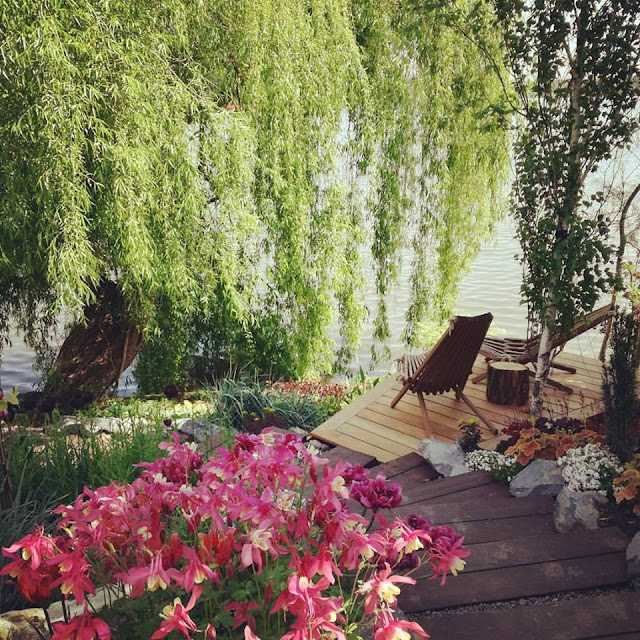 Gradina pe marginea lacului - teren in panta, proiectare gradina, amenajari gradini flori