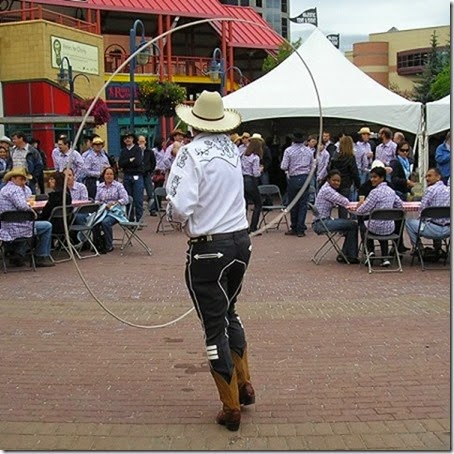 Comedy Cowboy Shows During The Calgary Stampede