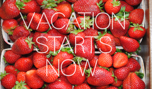 Lovely Infelicity: Vacation Starts Now