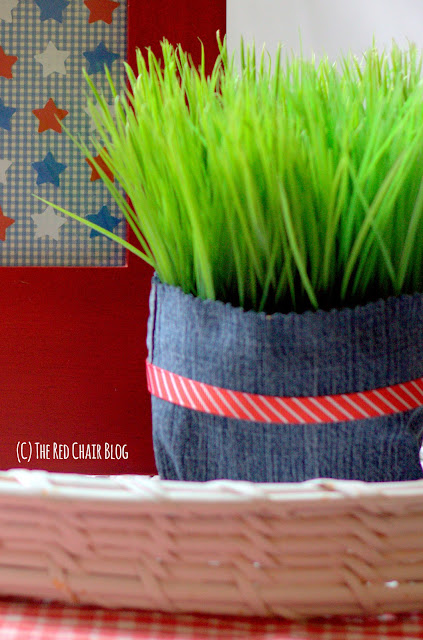 Easy DIY 4th of July vignette with plant and star collage at The Red Chair Blog
