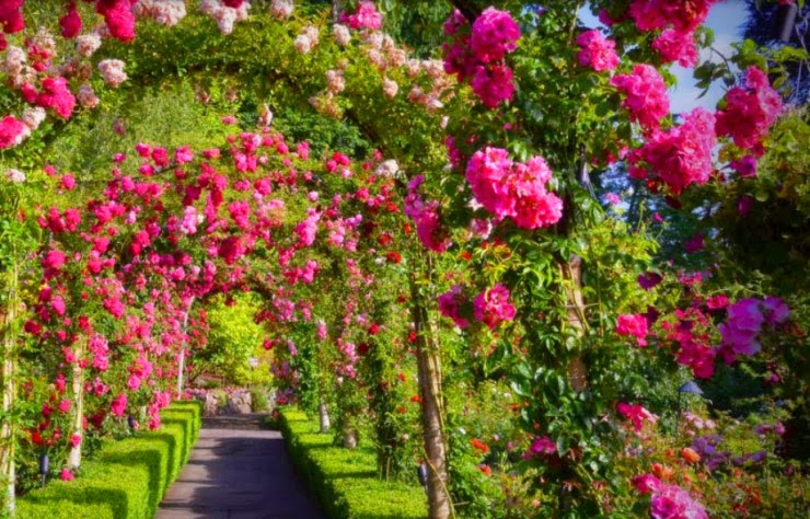 15. The Butchart Gardens, Brentwood Bay, British Columbia, Canada - 29 Wonderful Paths