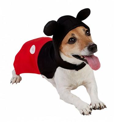 tenue-pour-chien-mickey-mouse