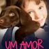 Resenha- Um amor de quatro patas- Sérgio Chimatti
