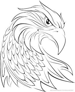Ausmalbilder Adler Bild Malvorlage Malvorlagen