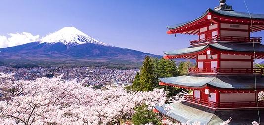 Restorant Halal di Jepang Yang Bisa Dikunjungi
