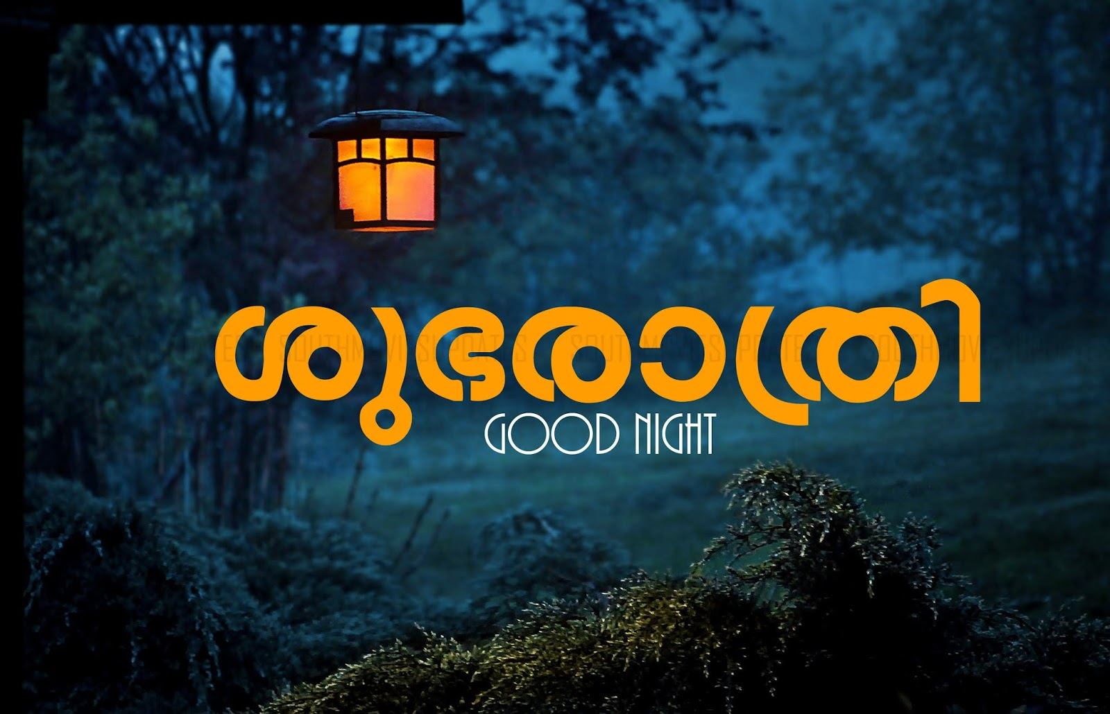 Good Night Love Quotes Malayalam