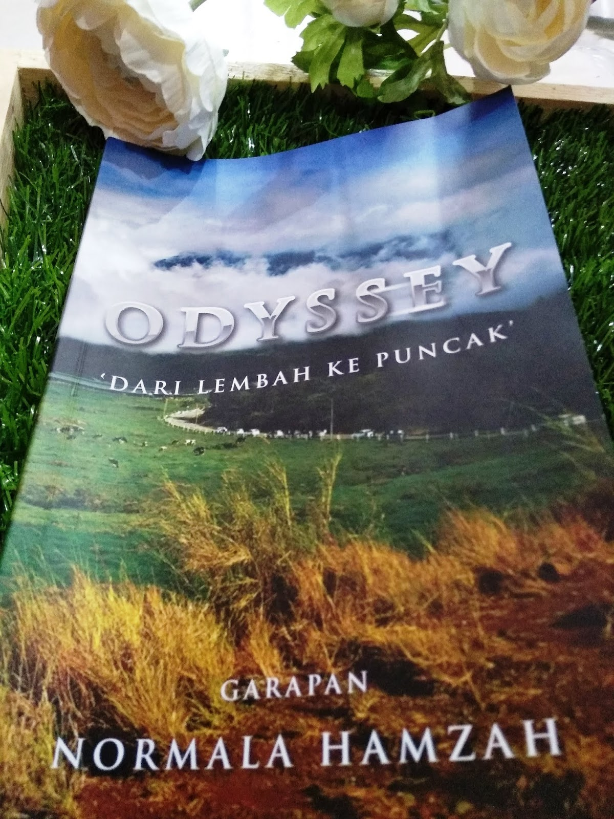 Odyssey Dari Lembah Ke Puncak - Kisah Inspirasi Hidup Semua Wajib Baca