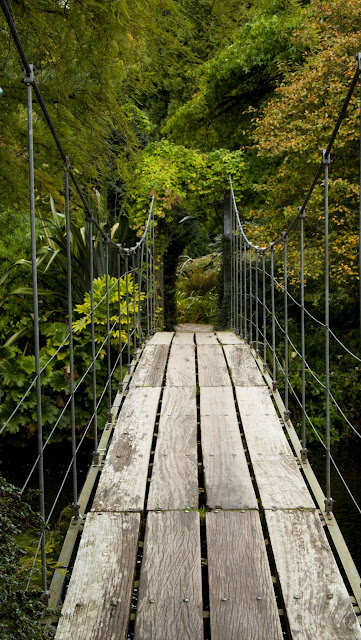 Suspension bridge in Mount Usher Gardens in County Wicklow