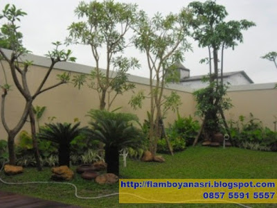 Tukang Taman Surabaya Taman Minimalis Sampin Rumah