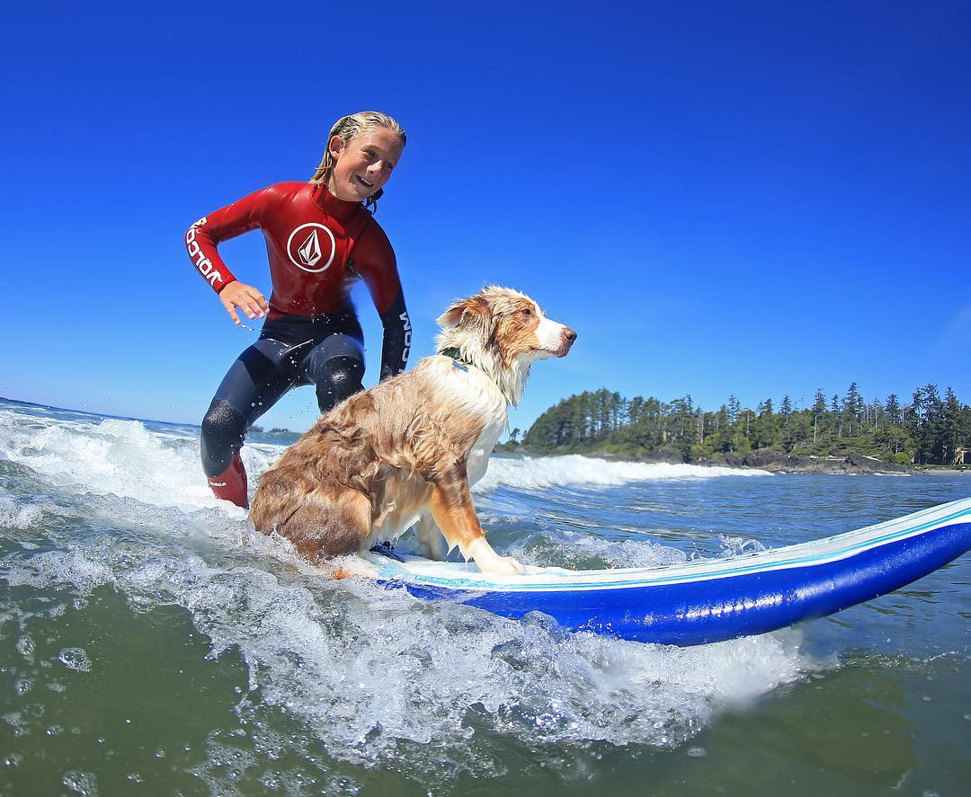 merek brand surfwear surfing skateboard kaos hoodie jaket tshirt sweater topi terkenal branded pakaian baju model jenis macam distro original kw papan selancar toko bagus keren desain