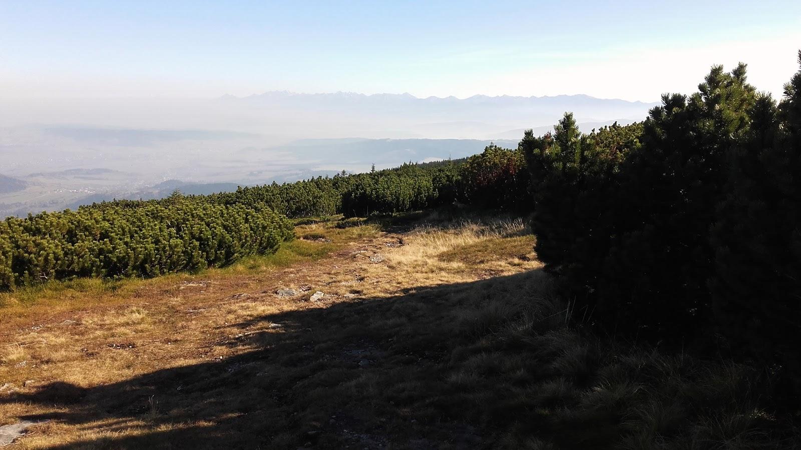 pilsko widok ze szczytu