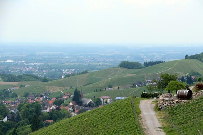 Schlafen im Weinfass - Gasthof Wild in Sasbachwalden