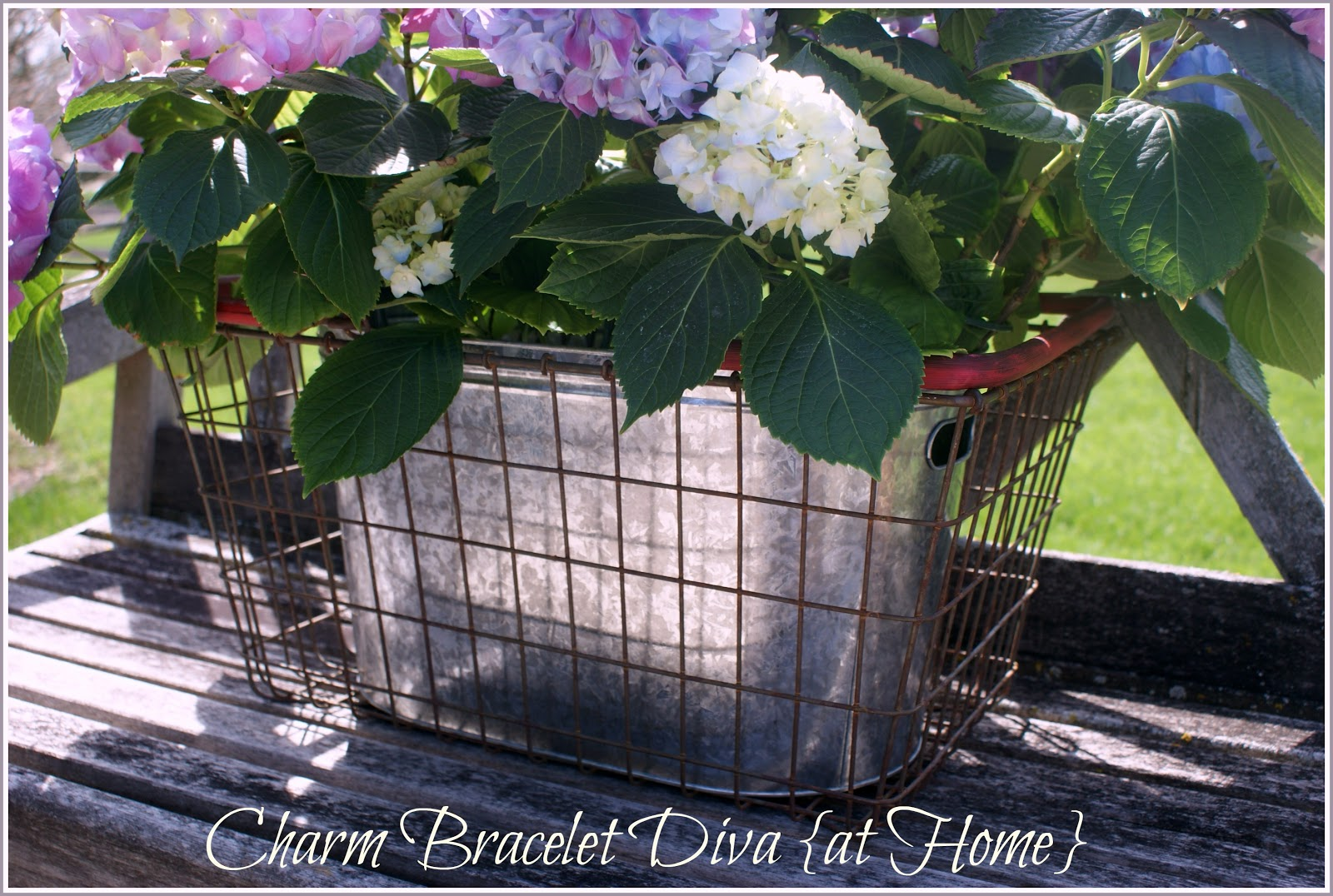 Our Hopeful Home Hydrangea School And Rusty Vintage Wire