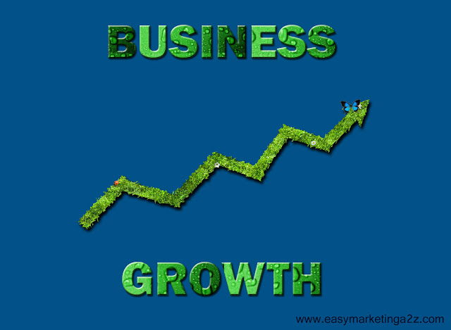 Business Growth 12