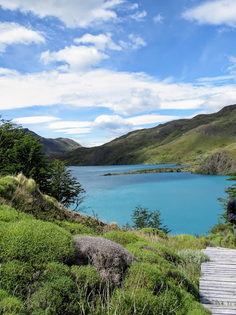 Boardwalk and blue lake view in Torres del Paine National Park on the Salto Chico Trail