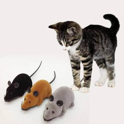 Chuột điểu khiển từ xa cho mèo - Đồ chơi giải trí cho quàng thượng