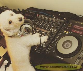 Cara Belajar DJ Untuk Pemula Secara Otodidak