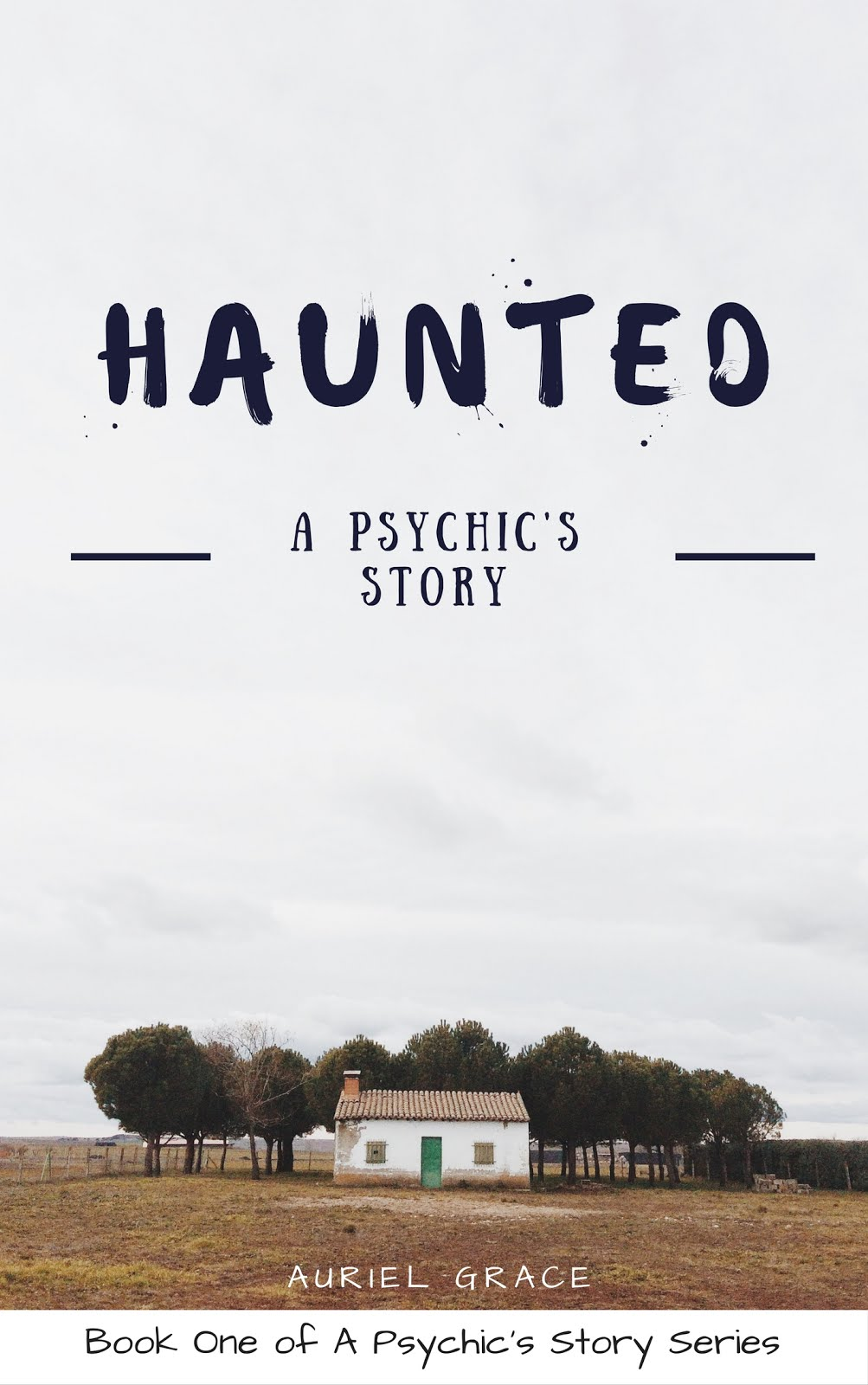 Haunted - A Psychic's Story