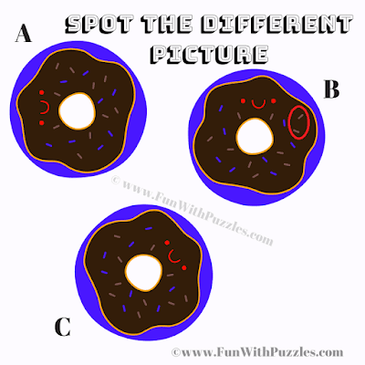 This is Answer image of Find the Odd One Out Picture Puzzle