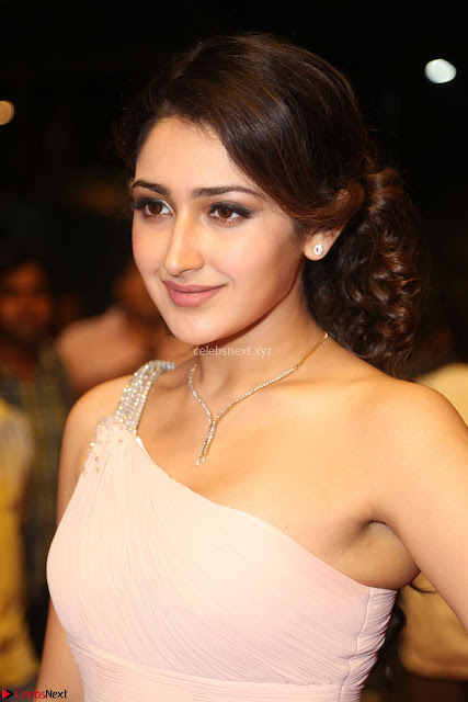 Sayesha Spicy Half Shoulder Cream Gown at Zee Telugu Apsara Awards 2017 03.JPG