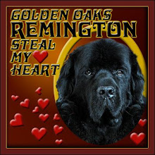 Remington my sweet love