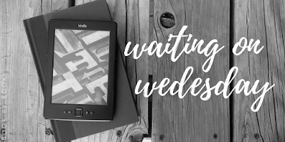 Waiting on Wednesday | The Illusionist's Apprentice & For Love and Honor