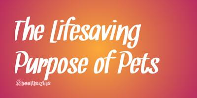 The Lifesaving Purpose of Pets