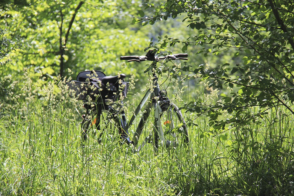 Best Biking Holiday Destinations