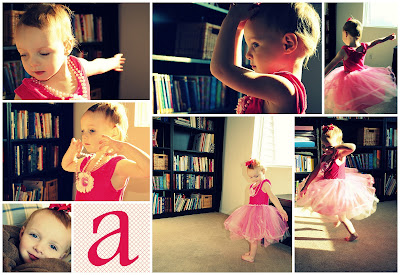 How to make photo collages with Picasa | Skip To My Lou