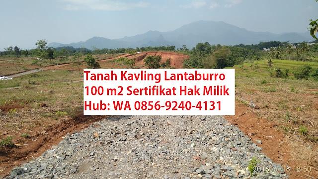KAVLING-BUAH-LANTABURRO-TANJUNGSARI-jual-tanah-di-bogor-murah-KAVLING-LANTABURRO