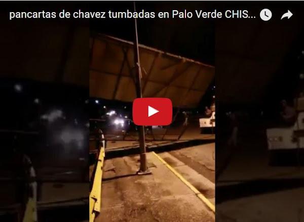 Tumban pancartas del engendro de Chavez en Palo Verde