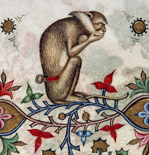 Medieval illumination detail featuring a thoughtful monkey