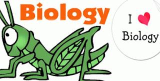 Prediksi Soal Ujian Akhir Nasional SMA Biologi