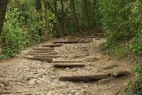 Křížová cesta/The Calvary Way