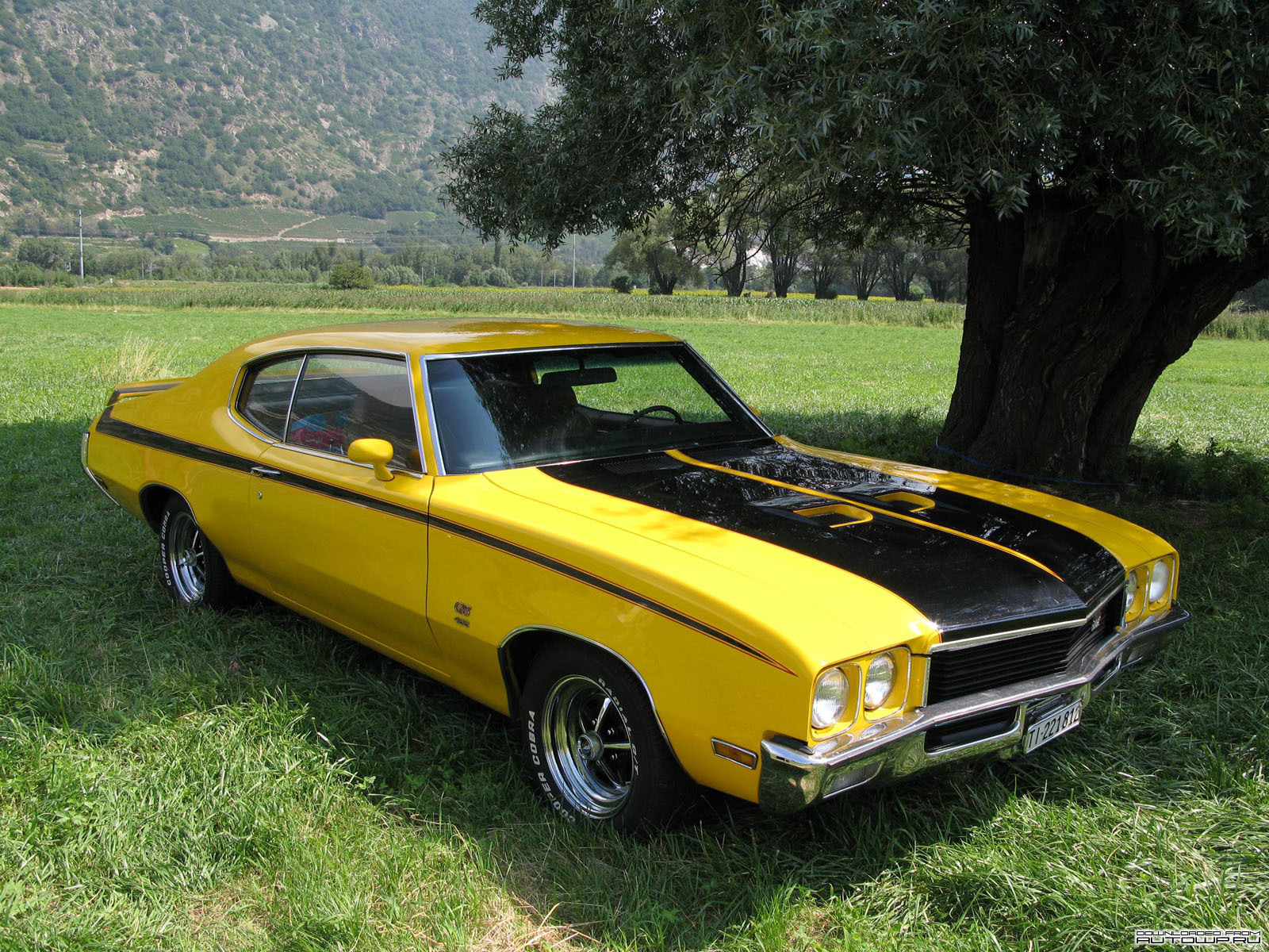 Muscle car wallpapers 1 car wallpapers - Pictures of muscle cars ...