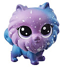 Littlest Pet Shop Series 3 Mini Pack Starry Pomeran (#3-2) Pet