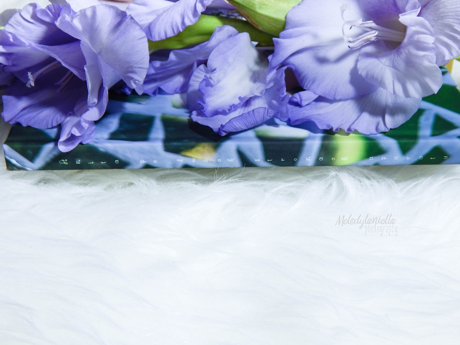 saal digital fotoksiązka recenzja melodylaniella blog pomysl na prezent fotografia fotograficzne prezenty .JPG pamiatkowe ksiazki foto