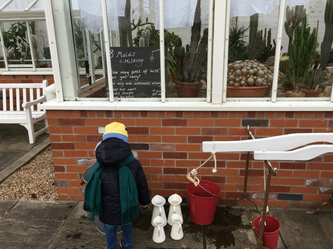12-days-of-christmas-at-dyffryn-gardens-a-toddler-explores-maids-a-milking