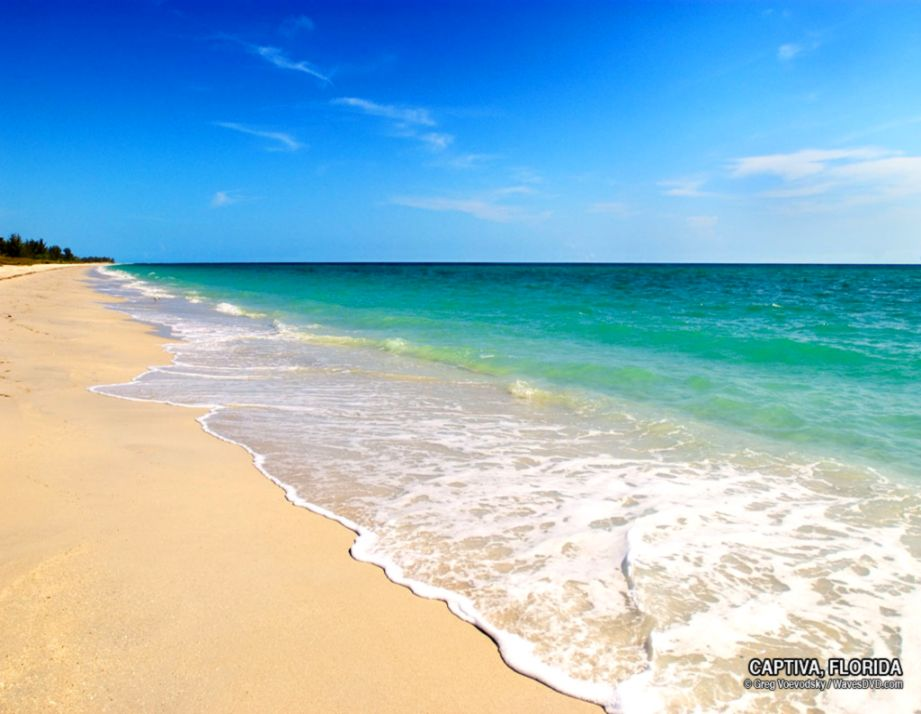 Beach American Grit