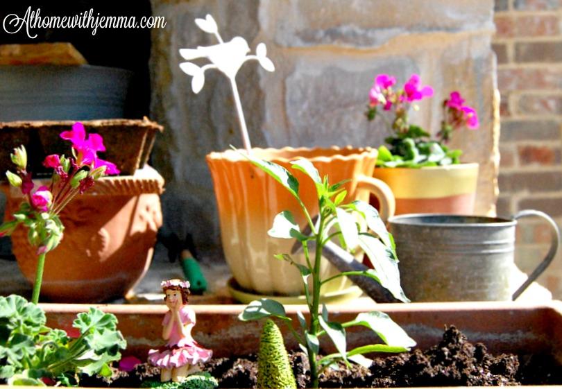 patio-plants-garden-gardening-athomewithjemma